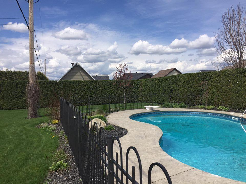 taille de haies de cèdre sherbrooke piscine